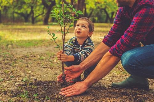 szkolenia dla rodziców